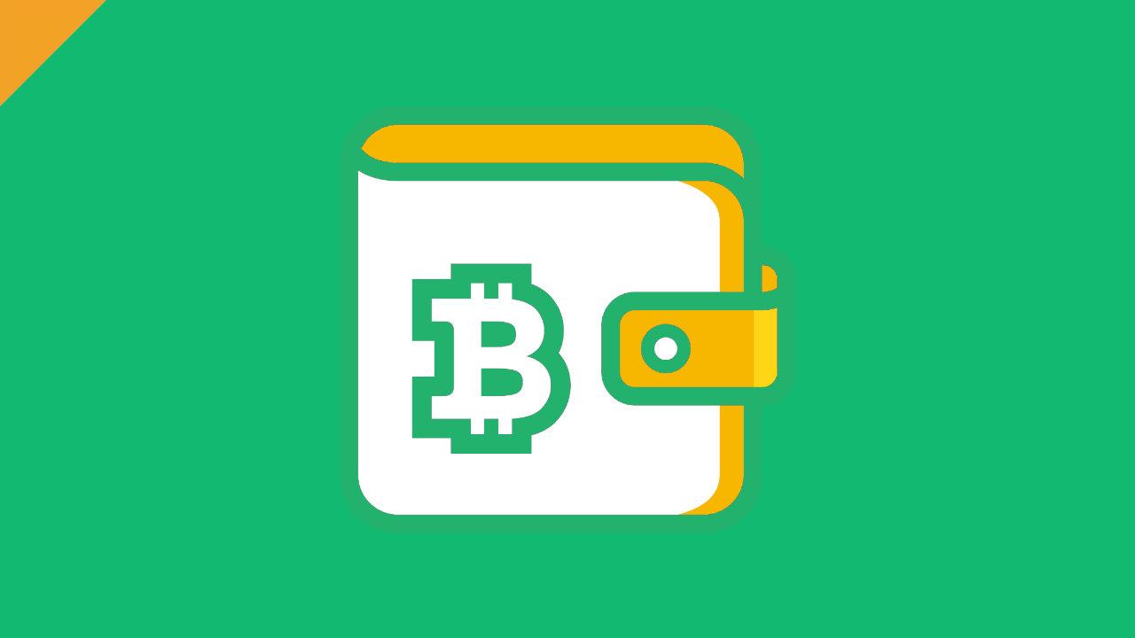 memorizzare bitcoin su usb