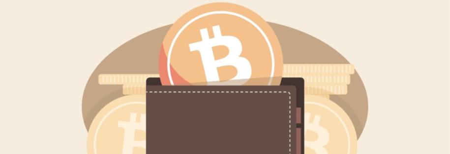 portfel kryptowalut