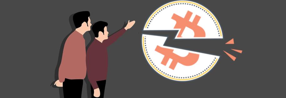 w oczekiwaniu na halwing bitcoina, który nadejdzie w przyszłym roku