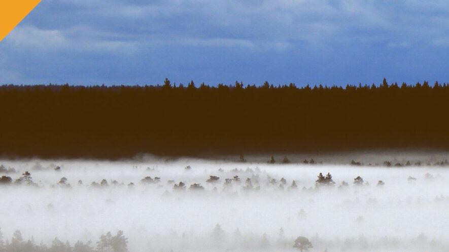 estonia opracuje cbdc