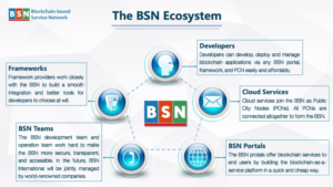 projekt BSN