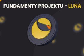 Fundamenty projektu LUNA