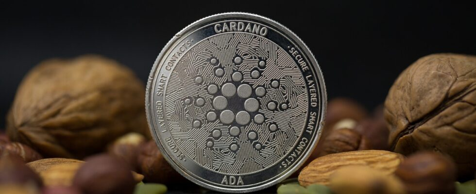 Kryptowaluta Cardano - ADA