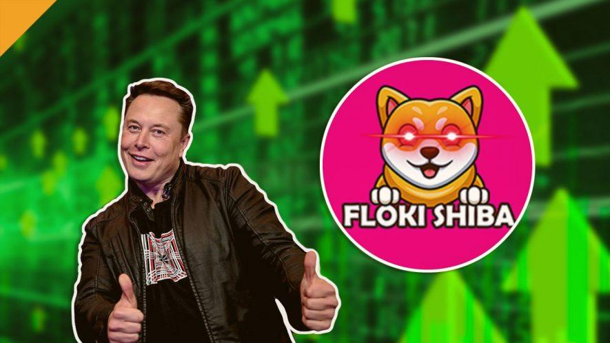Shiba Floki rośnie o 1300% po tweecie Elona Muska