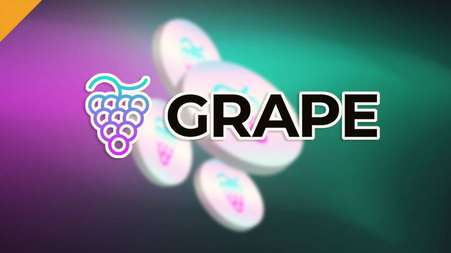Grape Network oparty na blockchainie Solana, zbiera 1,2 mln USD